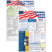 """Massachusetts and Federal Labor Law Poster Combo - 24"""" x 36"""""""