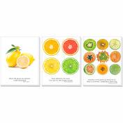 """Advantus® Canvas Motivational Print, 11""""W x 14""""H Breakroom Fruit, Set of 3"""