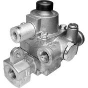 """Safety Valve, 1/4"""" X 1/4"""" FPT, For Jade, 4615200000"""