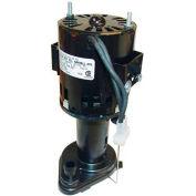 Pump/Motor Assembly -115V For Scotsman, SCO12-2586-21