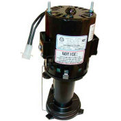 Pump/Motor Assembly -115V For Scotsman, SCO12-2586-27