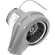 Motor, Blower - Burner 230V For Lincoln, LIN369589