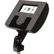 Lithonia DSXF1 LED 1 40K M4 LED Flood Luminaire Mvolt 2100 Lumens
