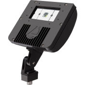 Lithonia Lighting DSXF1 LED P1 50K M4, LED Flood Luminaire, 1 light engine, 5000 CCT