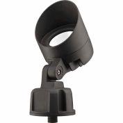 Lithonia OLBF 8 50K DDB M6  LED Bullet Flood - Flood Optics 120V 840 Lumens