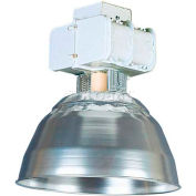 Lithonia THD 400MP A15 TB SCWA LPI Open High Bay Industrial Metal Halide  400w