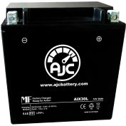 AJC Battery BMW K100 RS RT LT Motorcycle Battery (1982-1996), 30 Amps, 12V, B Terminals