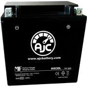 AJC Battery Polaris Ranger RZR XP 900 LE 900CC ATV Battery (2011-2014), 30 Amps, 12V, B Terminals
