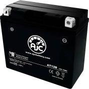 AJC Battery Ducati Desmosedici RR 1000CC Motorcycle Battery (2008-2009), 10 Amps, 12V, E Terminals