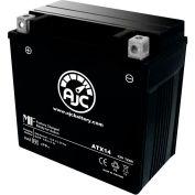 AJC Battery Honda TRX400FW eman 400CC ATV Battery (1995-2003), 12 Amps, 12V, B Terminals