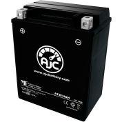 AJC Battery Polaris 340 Touring/Int 339CC Snowmobile Battery (2004), 14 Amps, 12V, B Terminals