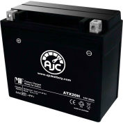 AJC Battery Arctic Cat Mountain Cat 500 Snowmobile Battery (2002), 20 Amps, 12V, B Terminals