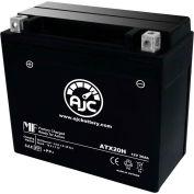 AJC Battery Arctic Cat Thundercat Snowmobile Battery (1997-2002), 20 Amps, 12V, B Terminals