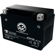 AJC Battery Yuasa YTZ12S Battery, 11 Amps, 12V, B Terminals