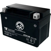 AJC Battery Honda VFR1200F 1200CC Motorcycle Battery (2010-2014), 11.2 Amps, 12V, B Terminals