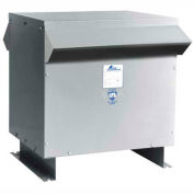 Acme Electric TPNS02533133S K Factor 20, 3 PH, 60 Hz, 480 Delta Primary Volts, 45 W