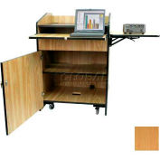 Non Sound Multimedia Presentation Plus Podium - Maple