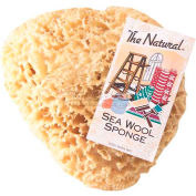 "8-9"" Natural Sea Wool Sponge #1 Cut - 3 Pack"