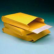 "Redi-Strip Kraft 2"" Expansion Envelopes, 10 x 13, 25/Pack"