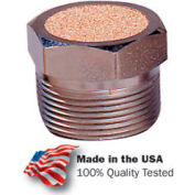 "Arrow ASP2BV, Pneumatic Breather Vent, Sintered Bronze, 40 Micron, 1/4"" NPT, 150 PSI - Pkg Qty 10"