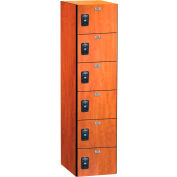 ASI Storage Traditional Plus Phenolic Locker 11-861818721 - Six Tier 18 x 18 x 12, Silver Gray