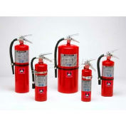Fire Extinguisher, 2.5 Lbs Multi-Purpose Dry Chemical, Cosmic 2 -1/2 E, Mark Bracket