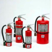 Fire Extinguisher, 2.5 Lb Halotron® 1, Mercury 2-1/2, Mark Bracket