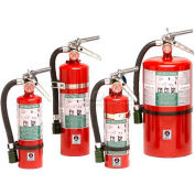 Fire Extinguisher, 10 Lb Carbon Dioxide, Sentinel 10