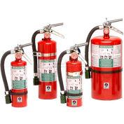 Fire Extinguisher, 15 Lb Carbon Dioxide, Sentinel 15