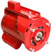 "Alltemp CP-R1462, 6.5"" Dia. X 9.5""L Hot Water Circulator Pump Motor w/ Ball Bearings - 3/4 HP, 8.8A"
