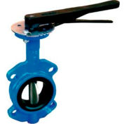 "2"" Wafer Style Butterfly Valve W/ Buna Seals and 10 Position Handle"