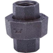 Anvil 1-1/2 In. Black Malleable 300 Br/Br Dart Union