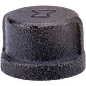 Anvil 2-1/2 In. Extra Heavy Black Malleable Cap