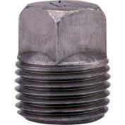 Anvil 2 In. Black Malleable Iron Cored Sq Head Plug