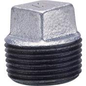 Anvil 1-1/4 Galv Ci Cored Sq Head Plug