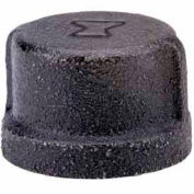 2 In. Black Malleable Cap 150 PSI Lead Free
