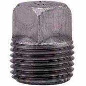 1 In. Black Malleable Square Head Plug 150 PSI Lead Free