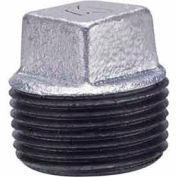 1-1/4 In Galvanized Malleable Cored Plug 150 PSI Lead Free