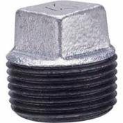 2 In Galvanized Malleable Cored Plug 150 PSI Lead Free