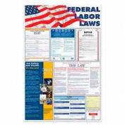 """Advantus® Federal Labor Law Poster, 24""""W x 36""""H, Assorted Colors"""