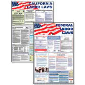 """Advantus® Federal and State Labor Law Poster, 24""""W x 36""""H, Assorted Colors"""