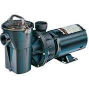 "Hayward 1 HP, 115V Power Flo II Vertical Pump Above Ground No Cord 1.5"""