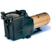 """Hayward 2 HP, 230V 2 Spd Super Pump, In Ground 2"""""""