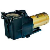 """Hayward 2.5 HP, 230V Super Pump max Rated In Ground 2"""""""