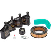 Briggs & Stratton 6036 15-20kw Generator Maintenance Kit