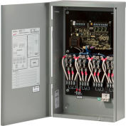 Briggs & Stratton 71035 240 Volt Load Control Center
