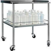 "Blickman Howard Instrument Shelf Table 3026SS 30""L x 26""W x 34""H"