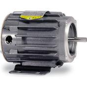 Baldor Motor CNM20134,  .13HP,  1725RPM,  3PH,  60HZ,  42C,  2516M,  TENV,  F1