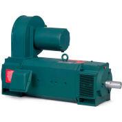 Baldor Motor D50125UR-BV, 125HP, 1750RPM, DC, UC2813ATZ, DPG-FV
