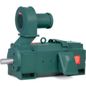 Baldor-Reliance Motor D5015RS-BV, 15HP, 1750RPM, DC, 2113ATZ, DPG-FV